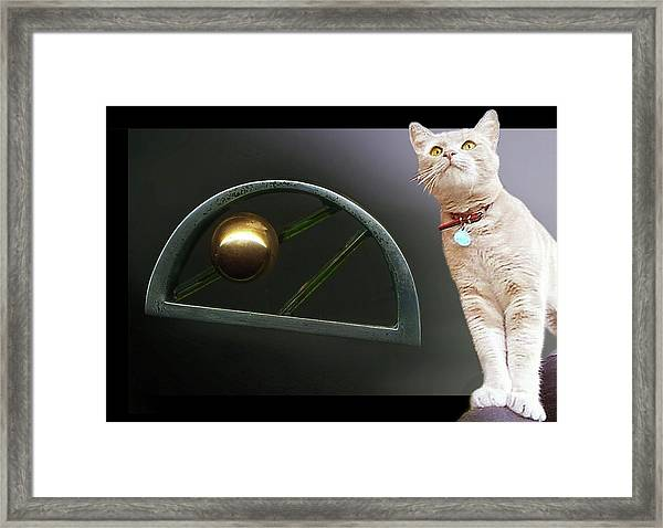 Cat, Silver And Gold  Brooch Framed Print