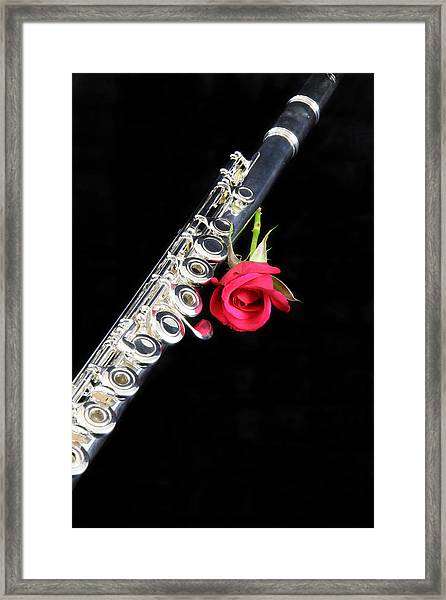 Silver Flute Red Rose Framed Print