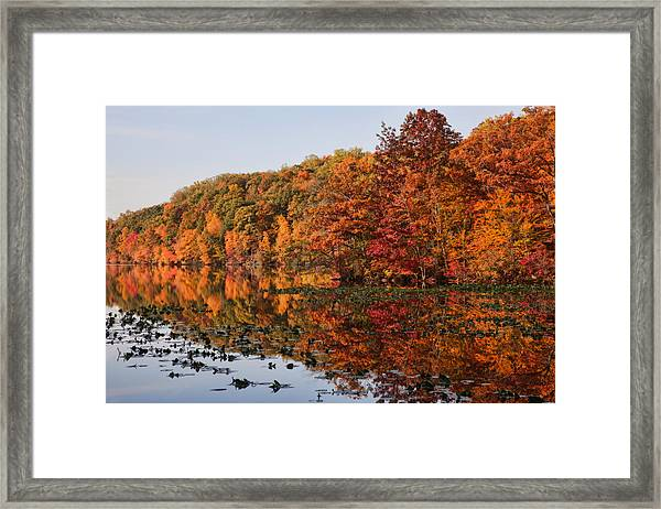 Silver Lake Reflections Framed Print
