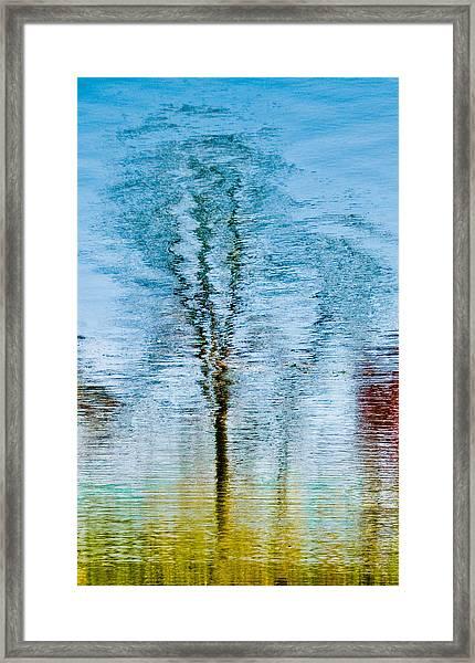 Silver Lake Tree Reflection Framed Print