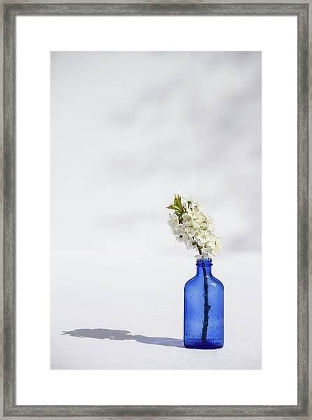 Simple Blue Framed Print