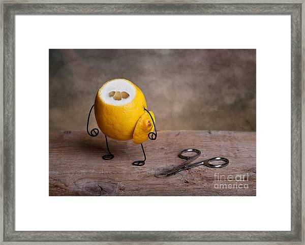 Simple Things 11 Framed Print