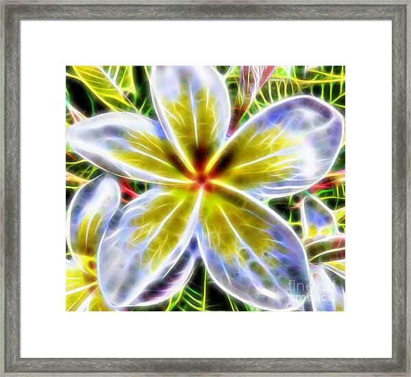 Single Fractal Frangipani Framed Print