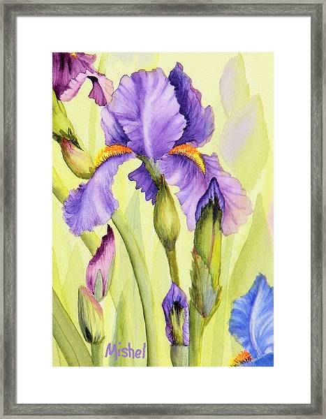 Single Iris Framed Print
