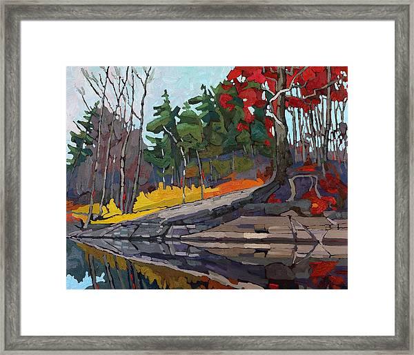 Singleton Autumn Framed Print