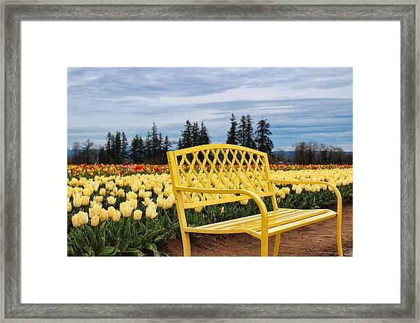 Sit And Enjoy Framed Print