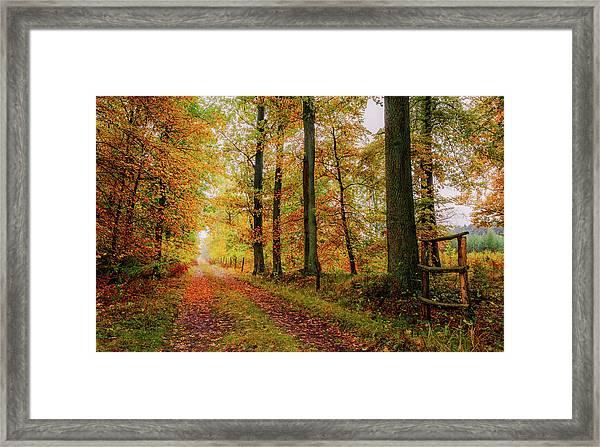 Site 6 Framed Print