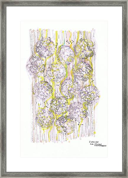 Size Exclusion Chromatography Framed Print