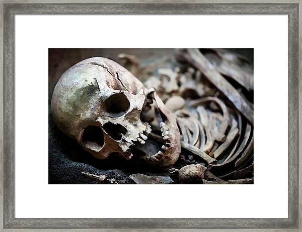 Skeleton Skull  Framed Print