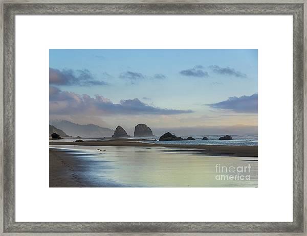 Skimming Along The Beach At Sunset Framed Print