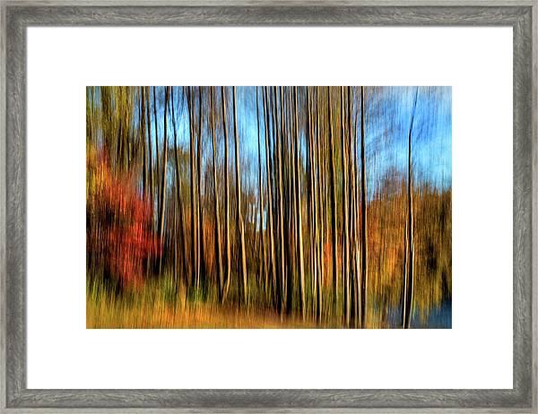 Skinny Forest Swipe Framed Print