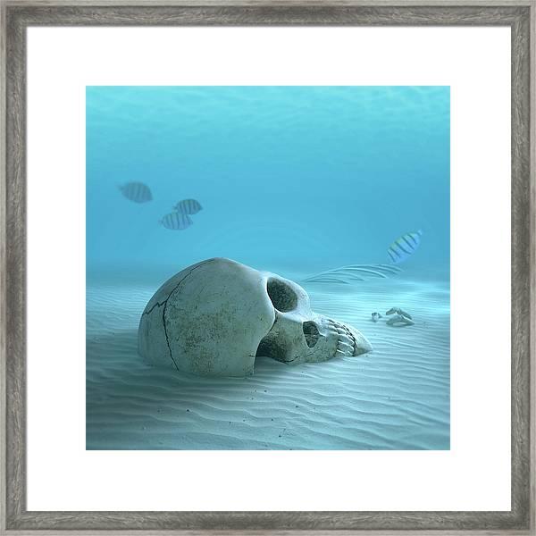 Skull On Sandy Ocean Bottom Framed Print