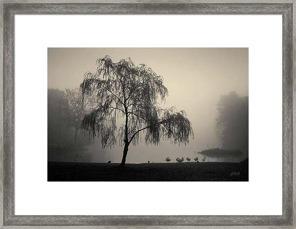 Slater Park Landscape No. 1 Framed Print