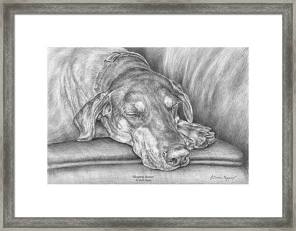 Sleeping Beauty - Doberman Pinscher Dog Art Print Framed Print