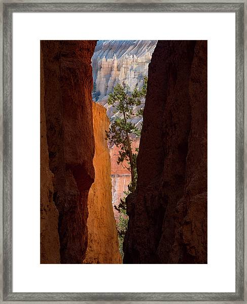 Sliver Of Bryce Framed Print