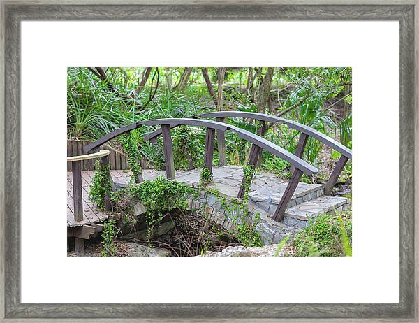 Small Brown Bridge Framed Print
