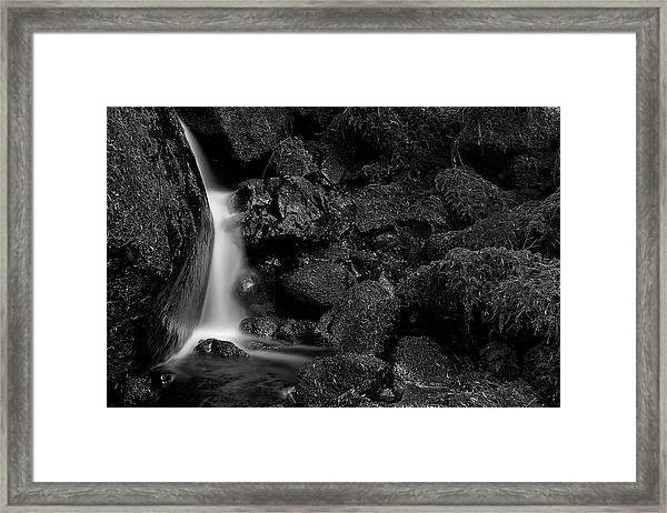 Small Fall Framed Print