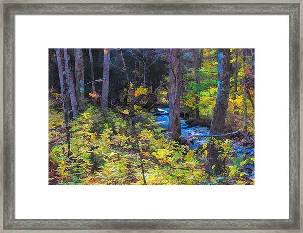 Small Stream Through Autumn Woods Framed Print