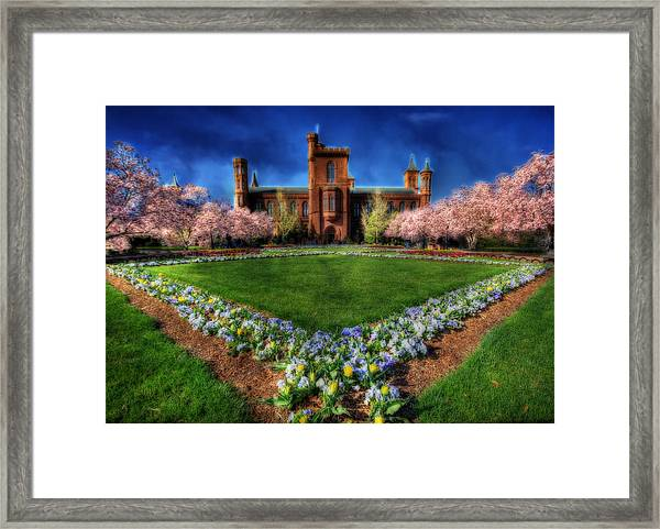 Spring Blooms In The Smithsonian Castle Garden Framed Print