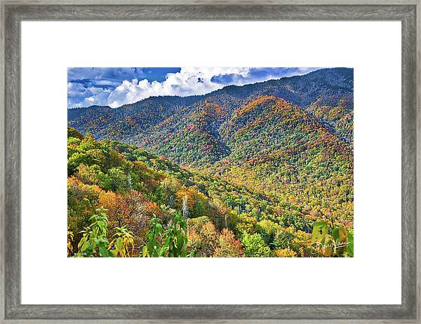 Framed Print featuring the photograph Smoky Mountain Glory by David A Lane