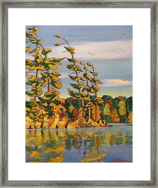Snake Island In Fall Sunset Framed Print