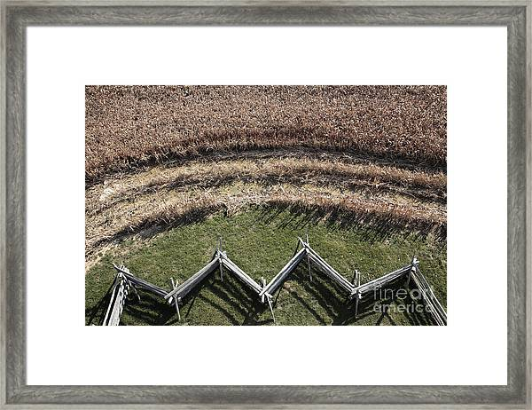 Snake-rail Fence And Cornfield Framed Print