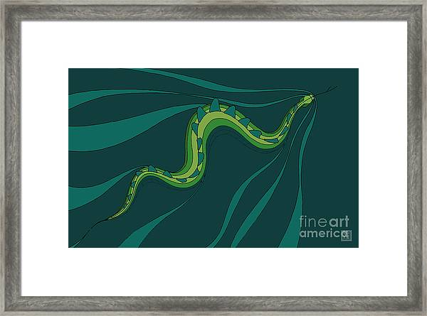 snakEVOLUTION I Framed Print