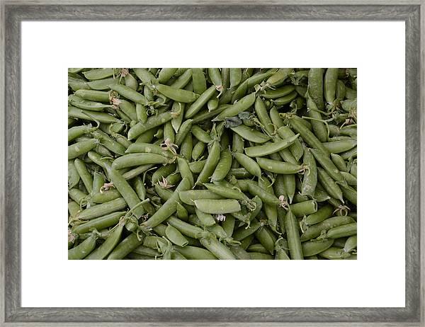 Snap Peas Framed Print