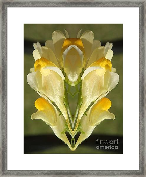 Snappy Bouquet Framed Print