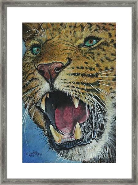 Snarl...amur Leopard Framed Print