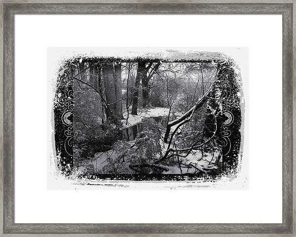 Snow 2018 Framed Print
