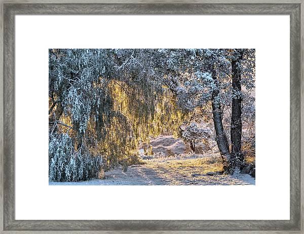 Snow At Sunrise 4 Framed Print