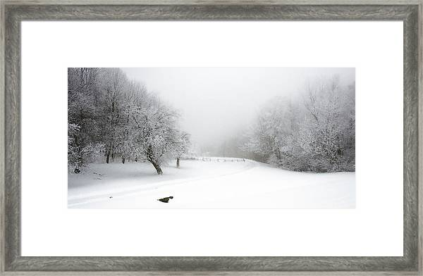 Snow Bound 2014 Framed Print
