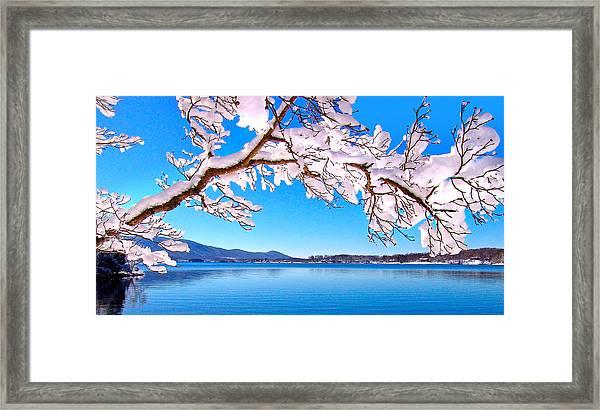 Snow Branch Smith Mountain Lake Framed Print