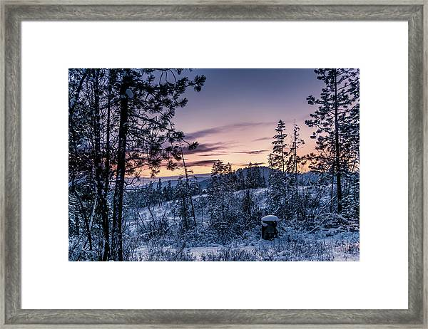 Snow Coved Trees And Sunset Framed Print