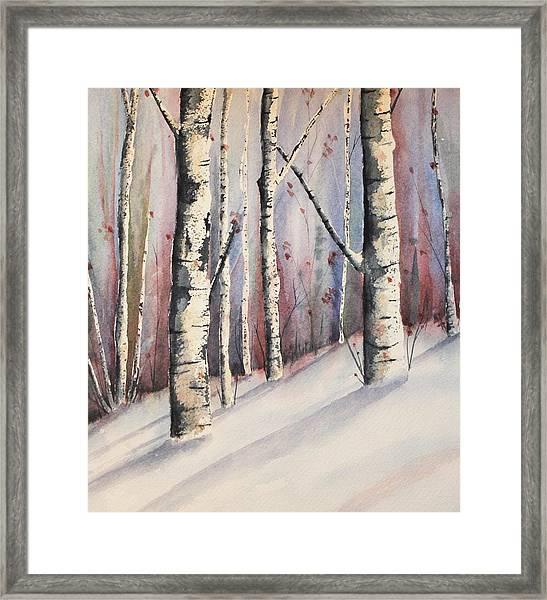 Snow In Birches Framed Print