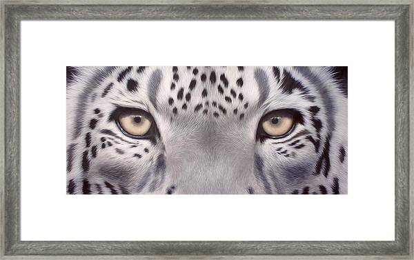 Snow Leopard Eyes Painting Framed Print