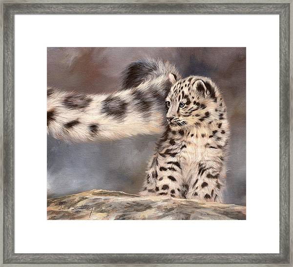Snow Leopard Tail Framed Print
