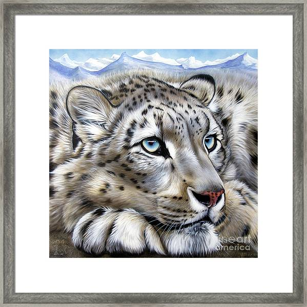 Snow-leopard's Dream Framed Print