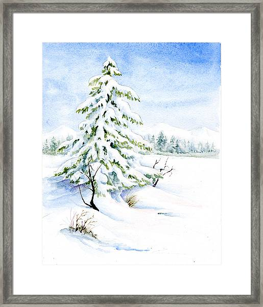 Snow On Evergreens Framed Print