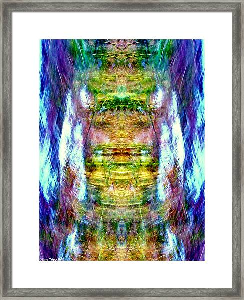 Snow Queen Framed Print by Jane Tripp