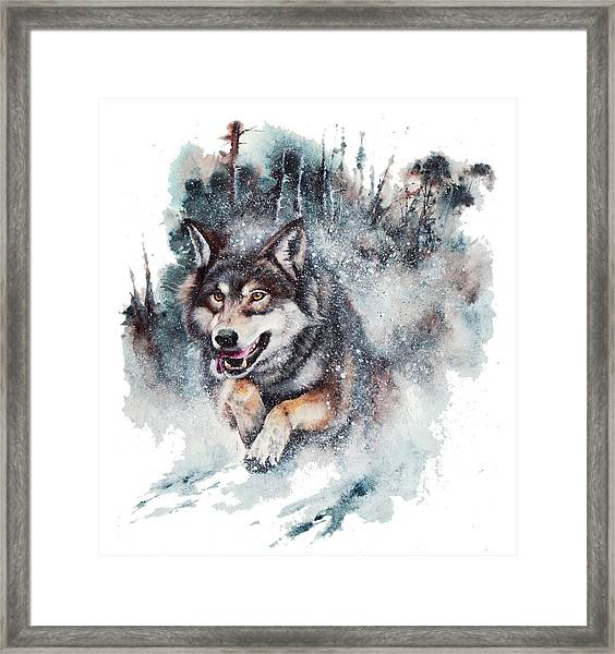 Snow Storm Framed Print