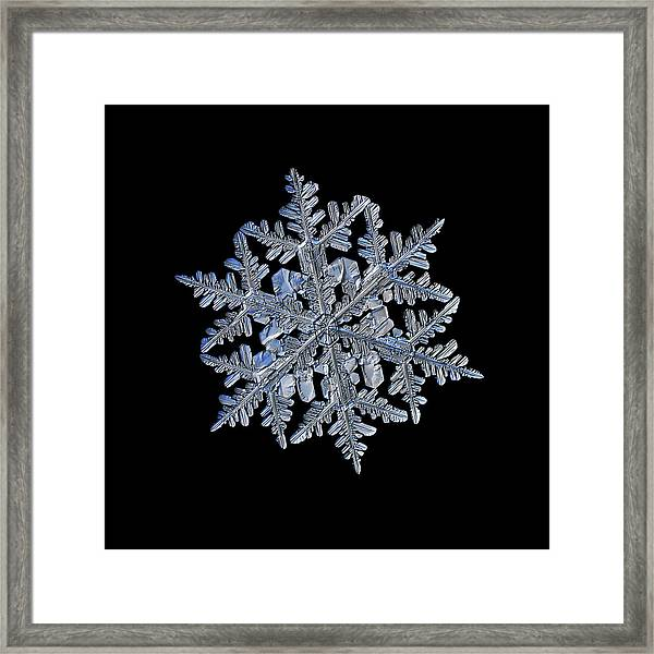 Snowflake Macro Photo - 13 February 2017 - 3 Black Framed Print