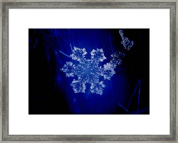 Snowflake On Blue Framed Print