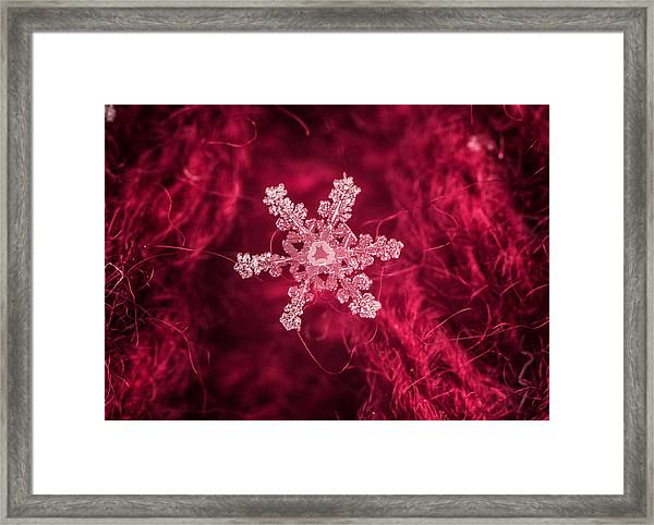 Snowflake On Red Framed Print
