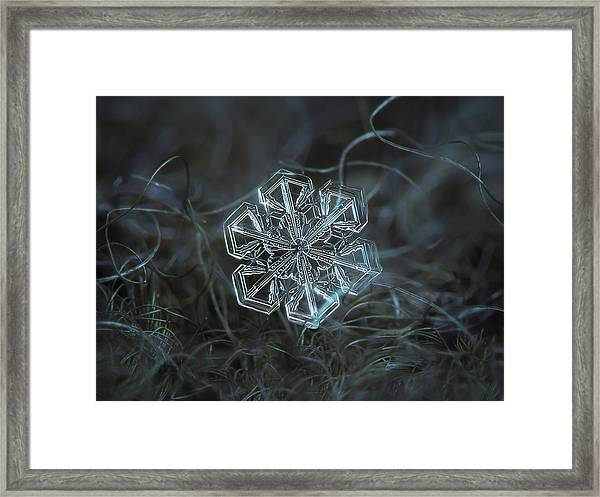 Snowflake Photo - Alcor Framed Print