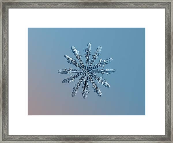 Snowflake Photo - Chrome Framed Print