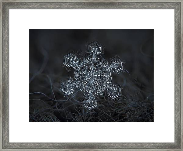 Snowflake Photo - Complicated Thing Framed Print