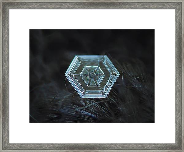 Snowflake Photo - Radiant Green Framed Print