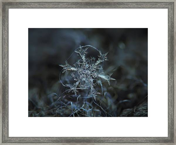 Snowflake Photo - Starlight Framed Print